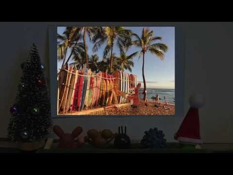 Christmas Island - featured by The Mole Pack