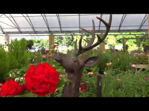 trelawney garden centre christmas opening hours