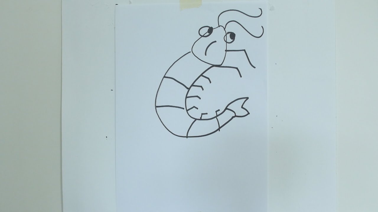 How To Draw Cartoon Prawn