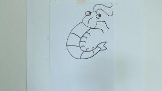 How to draw cartoon  prawn