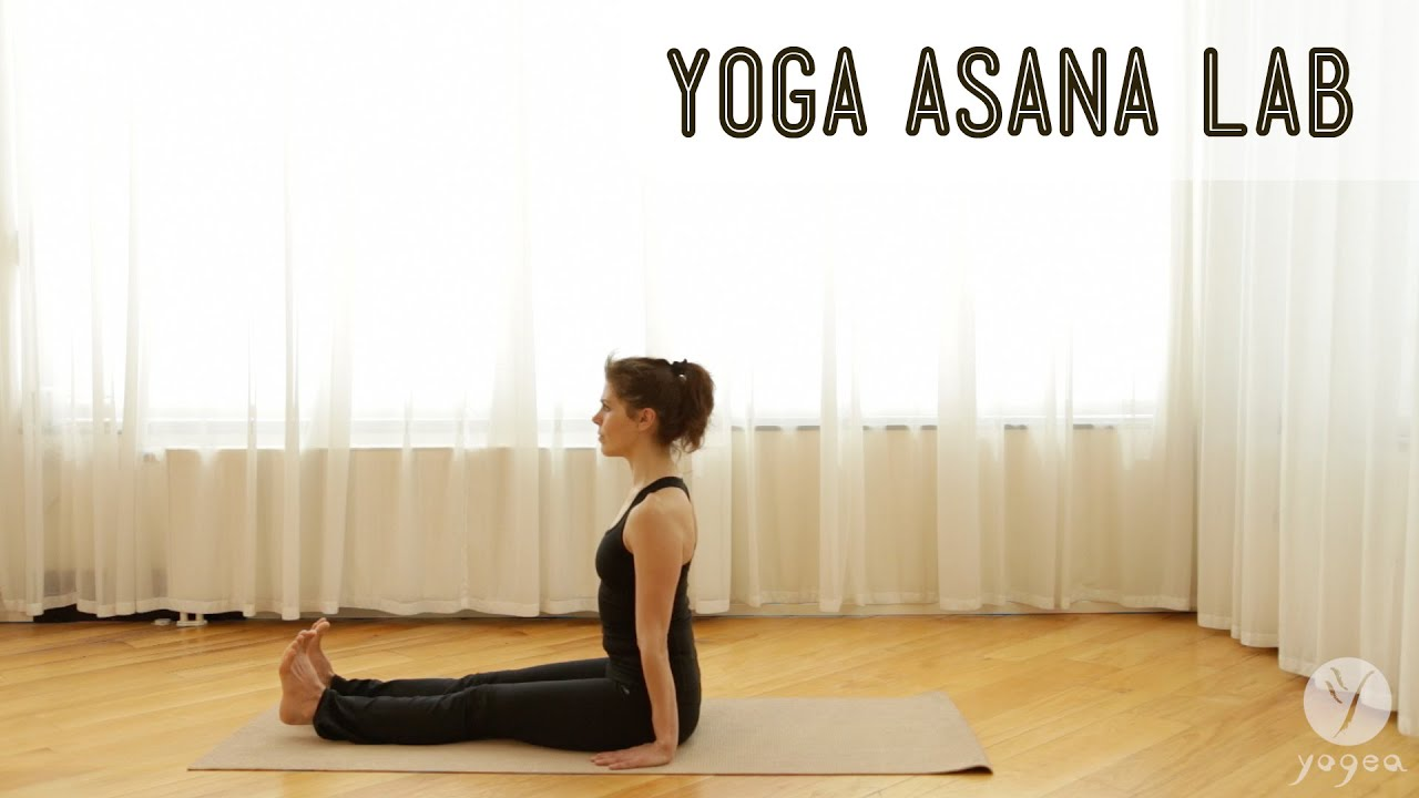 Yoga Asana Lab: Seated Postures (Staff, Butterfly, Cone, Forward ...