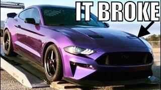 BROKEN DREAMS: A 2018-19 FORD MUSTANG GT RACING FILM. (4K)