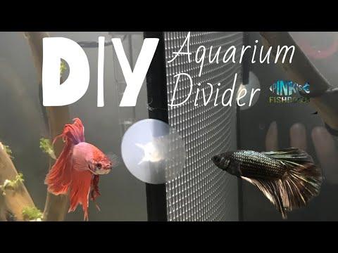 DIY AQUARIUM DIVIDER - Betta Fish Divider - Fits ANY Aquarium