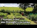 3 Simple Strategies for Dealing with Drought in the Garden