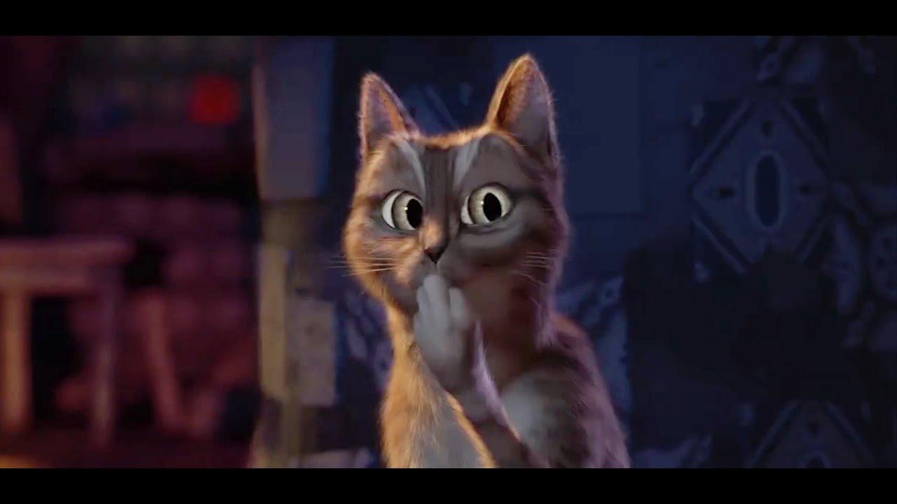"""Gato engraçado do """"Gato de Botas"""" - YouTube"""