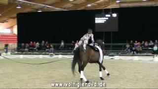Erwan Andres (FRA) - CVI2 Male - 01 - CVI Ermelo 2016