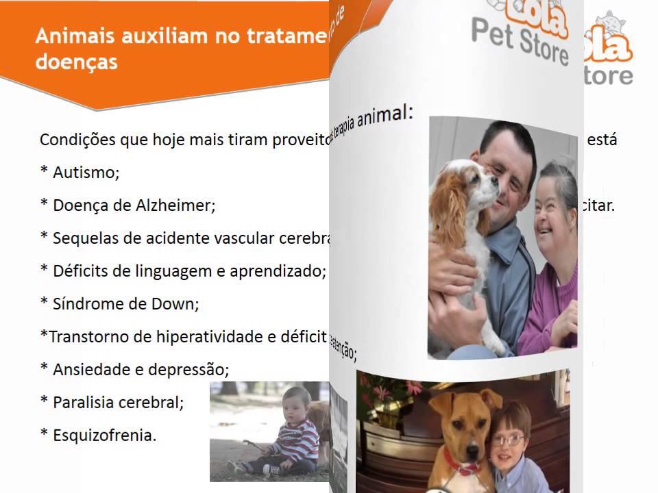 Benefícios em se ter um animal de estimação
