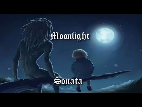 Moonlight Sonata 1st Movement | Piano & Cello