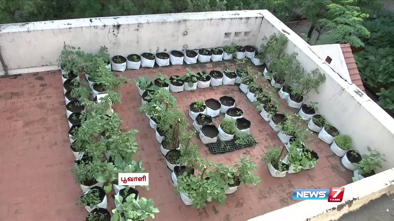 Healthier Impact Of Organic Terrace Gardening In Cities