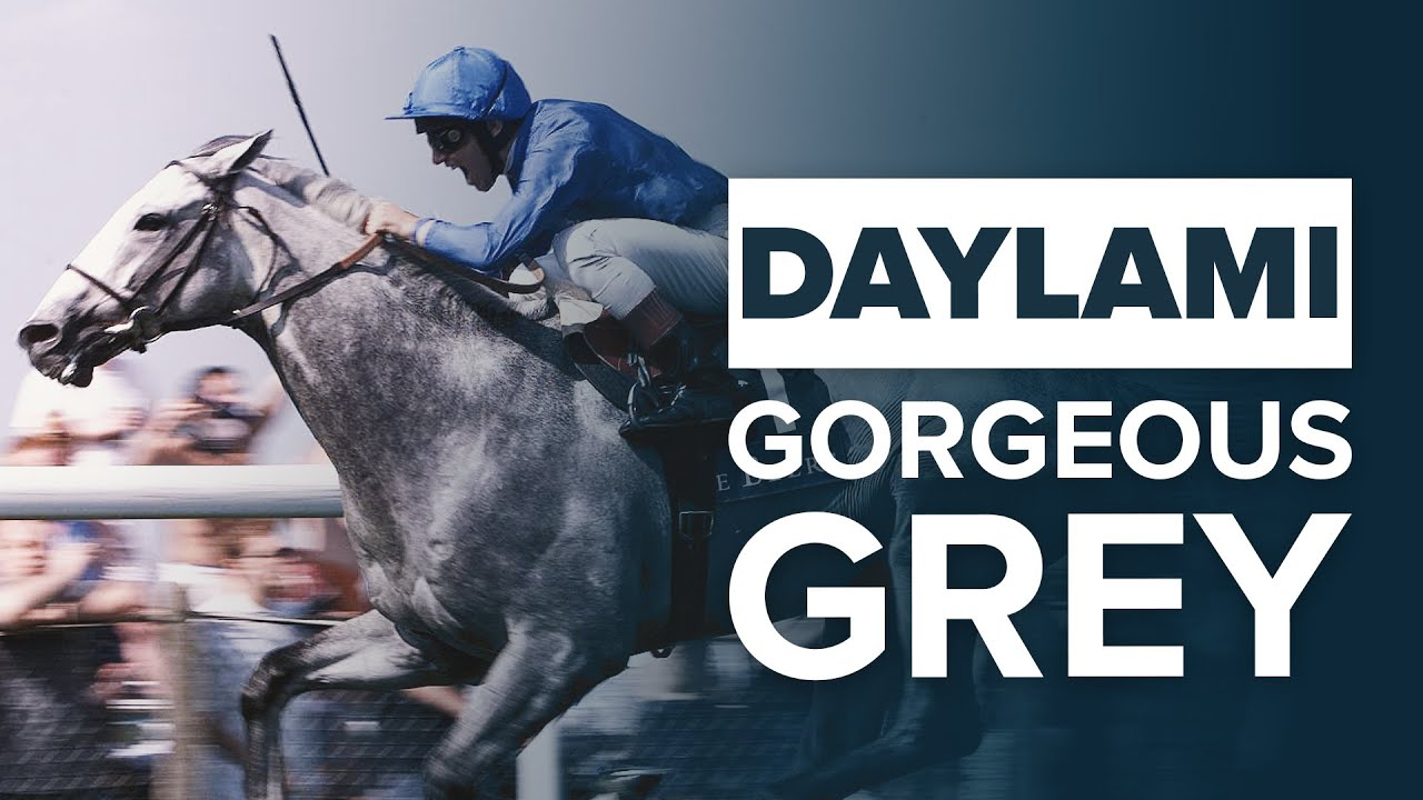 DAYLAMI: MOST UNDERRATED BREEDERS' CUP AND ASCOT WINNER?