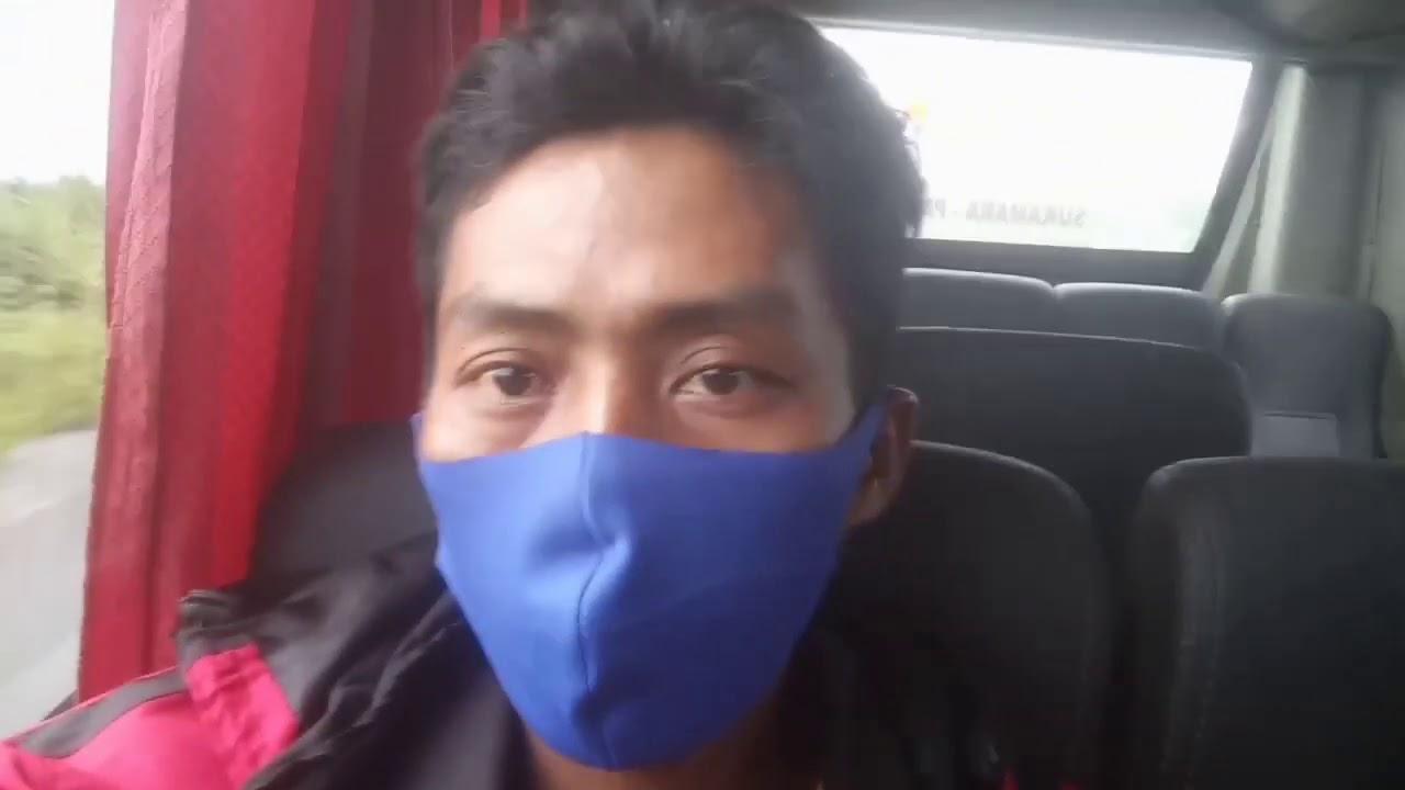 Pertama kalinya naik bis di Kalimantan_suasana hijau menemani perjalanan di Borneo