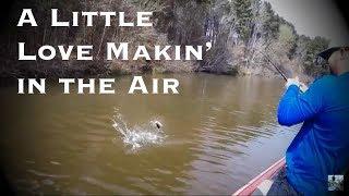 Video Lake Fork Bass Fishing: Spring Bed Fishing Tips download MP3, 3GP, MP4, WEBM, AVI, FLV Juli 2018