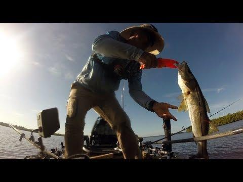Chokoloskee, FL Kayak Fishing