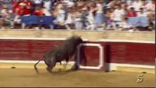 Bull Jumps Into Crowd at Spanish Bullfight, Injures 30