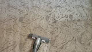 First time customer cleaning 17 year old carpets