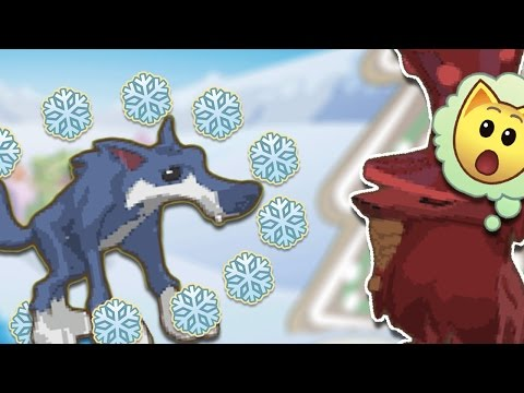 ANIMAL JAM: THE WINTER WOLF?