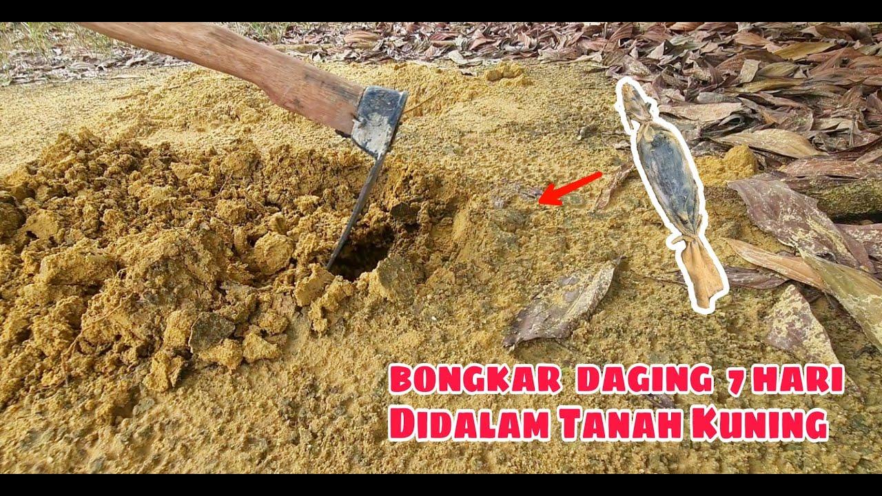 MENGERIKAN!!.. DAGING DIKUBUR 7 HARI DIDALAM TANAH  part#2