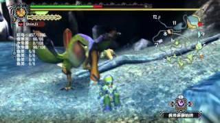 Monster Hunter Tri. 1080P Dolphin Maxed setting test.