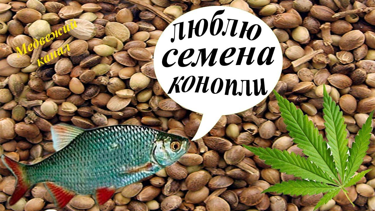 В интернет-магазине «актив», в липецке, вы можете купить все для рыбалки по сниженной цене от рублей. Оплата наличными и безналичным платежом. Самовывоз и доставка.