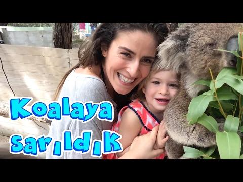 Avustralya' da Koalalara Sarıldık | Bizim Aile Eğlenceli Çocuk Videoları