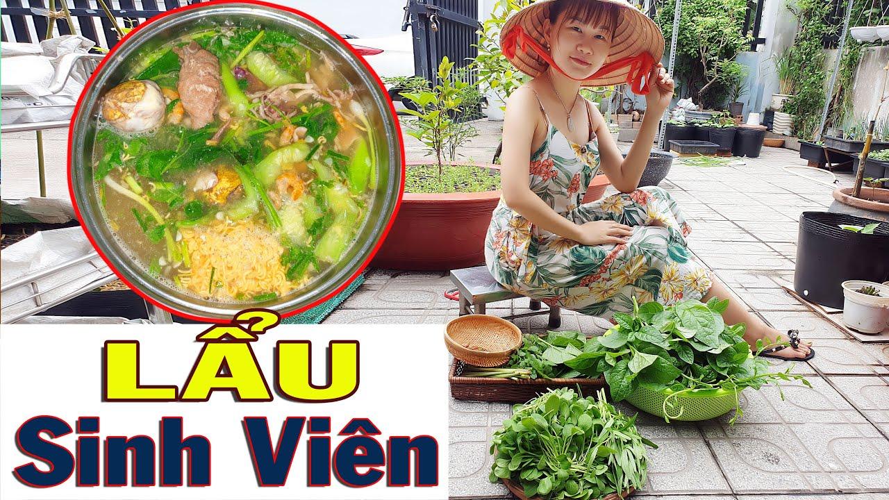 Video#43: Hái rau sạch tại vườn nhà   Lẩu Sinh Viên huyền thoại    Hồng Dương
