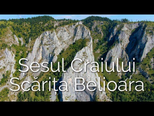 Muntele Mare pe doua roti, Muntele Baisorii, Sesul Craiului Scarita Belioara, Cosul Boului, Apuseni