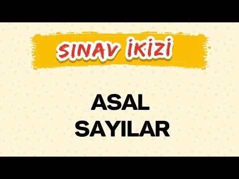 Private Video Şenol Hoca Matematik