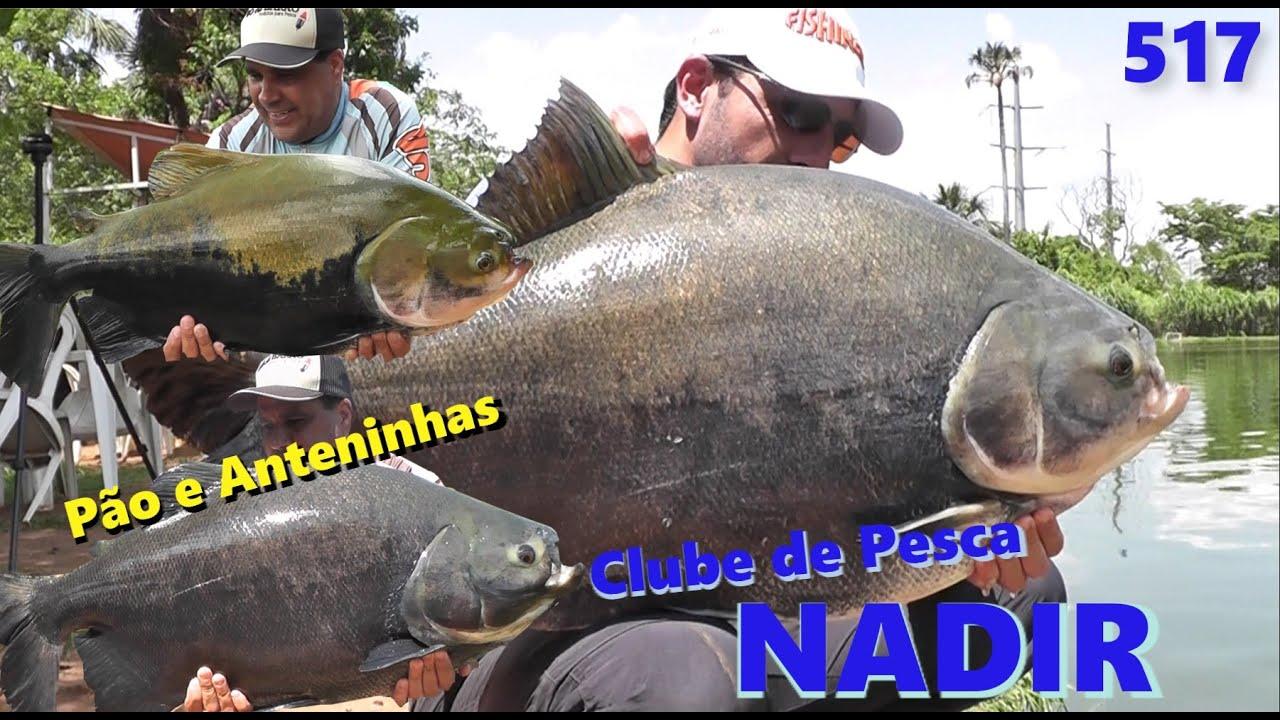 Nadir - Pescaria com pão e anteninhas - Fishingtur na TV 517