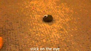how to make a pet rock !!! :)