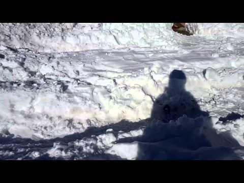 So much snow in Maryland..test - Sun Jan 24 13:32:10 EST 2016