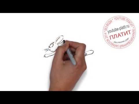 Детские картинки ну погоди онлайн  Как правильно рисовать волка Ну погоди