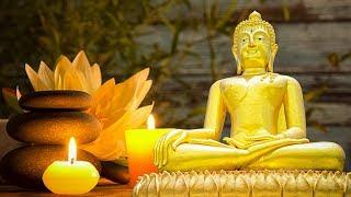 Nhạc Thiền Buổi Sáng - Lắng đọng tâm hồn trong 3 phút với bản nhạc thiền hay tuyệt
