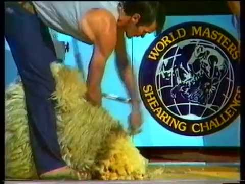 World Masters Shearing Challenge