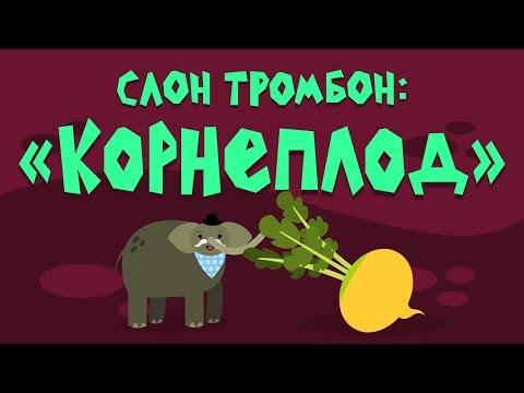 "Слон Тромбон: ""Корнеплод"""