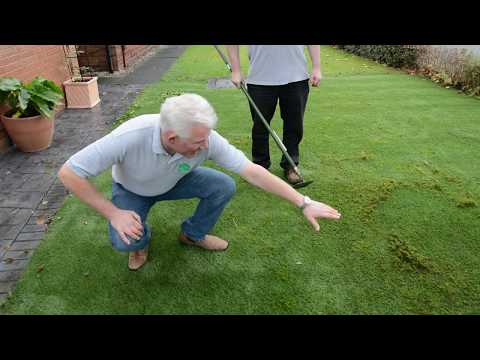Serving Latex Artificial Grass From Weeds, Moss and Shrinking