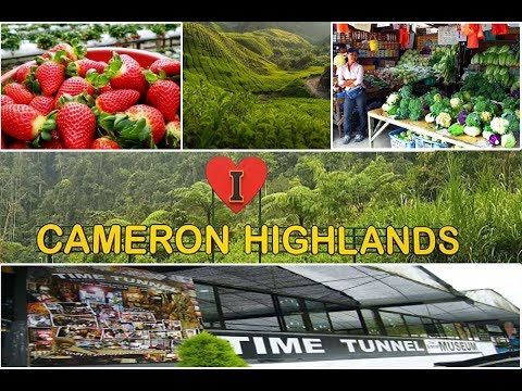 Cameron Highlands Malaysia | Attractions of Cameron Highlands │ Enjoying 1 Malaysia 2017