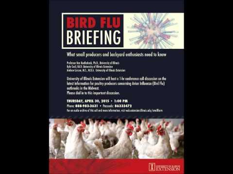 2015 Bird Flu Briefing