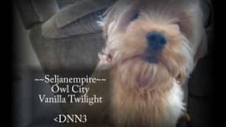 Piano Collection - 09 Owl City - Vanilla Twilight