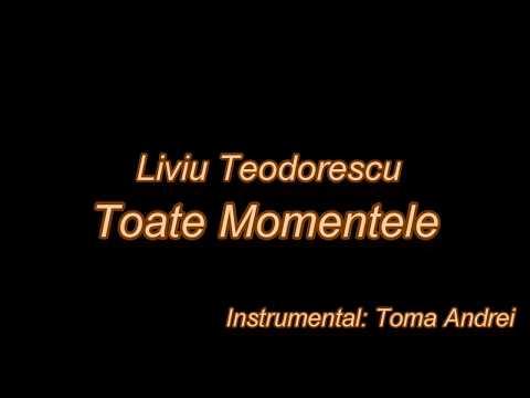 Liviu Teodorescu - Toate Momentele (karaoke)