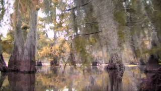 Bayou Bucks DVD Trailer