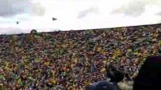 The Wave at Michigan Stadium
