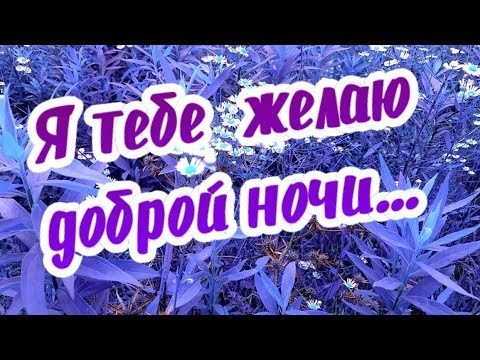 Я тебе желаю доброй ночи, я тебе желаю снов красивых!