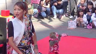 ハルみゆき改め、やまとなでしこ 大田美由紀さんとハルのコンビ 二助企...