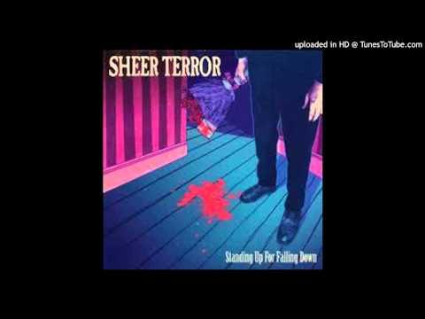 Sheer Terror - Did You Just Meet Me?
