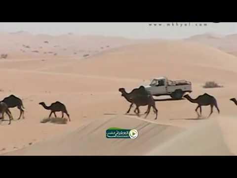 البدو في السعوديه The Bedouins in Saudi Arabia
