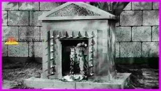 Naga Devatha Evaru - Nagula Chavithi Telugu Movie - Shavukar Janakai,Jamuna,Nagabhushanam