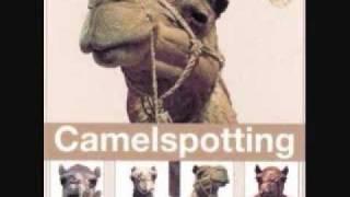 تحميل أغنية Adel Kassab Aidy Bzank Camelspotting Lebanon mp3