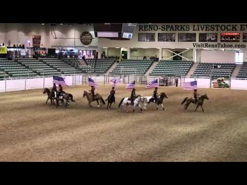 Rodeo A Cavallo.Cavallo Cowgirls Long Reno Rodeo 2019 Youtube