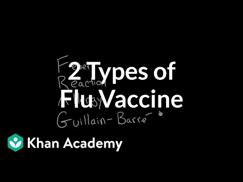 2 Types of Flu Vaccine