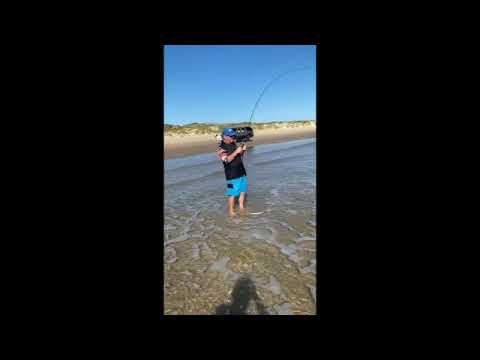 PINS Fishing Report 102719